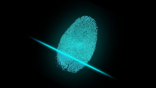 REAL ID Cards and Government Tracking